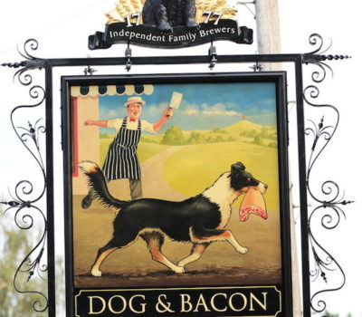 Border Collie,pub,dog and bacon