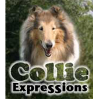 collie-expressions