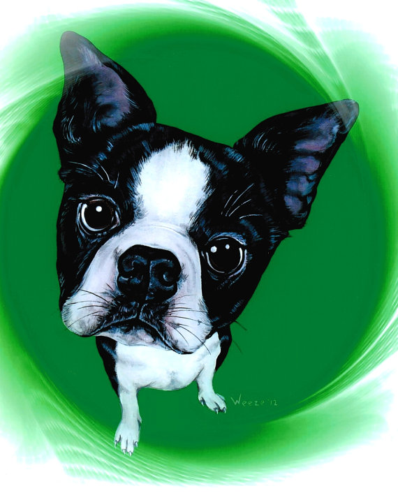 Helen Keller, Boston Terrier,