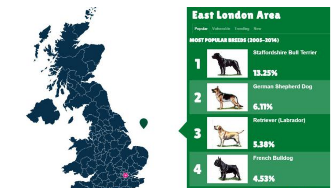 map, purebred dogs, dogs, British breeds