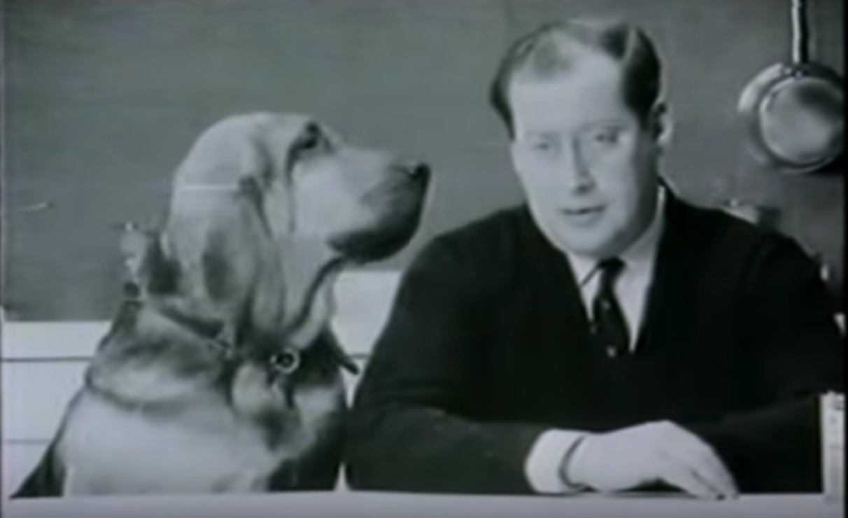 Clement Freud, Bloodhound
