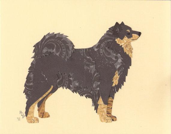 Finnish Lapphund,purebred dog