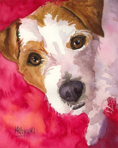 Jack Russell Terrier, Russell Terrier, Parson Terrier