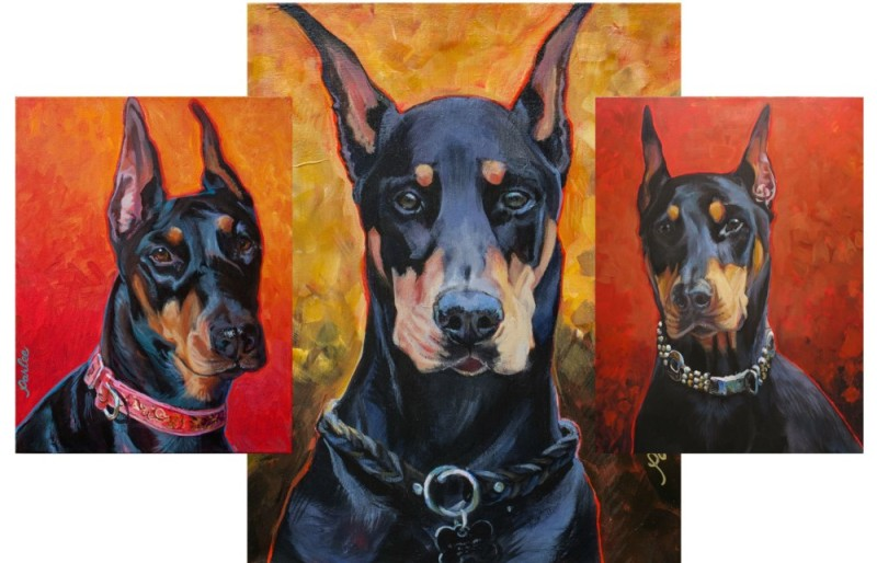 Doberman Pinscher,King Doberman Pinscher,Superior Doberman Pinscher,Excelsior Doberman Pinscher,dog,purebred dog