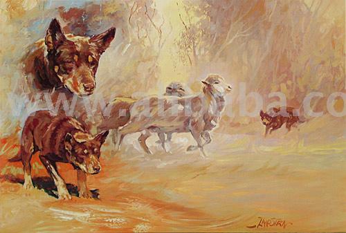 Kelpie, Australian,dog, Zaadstra,