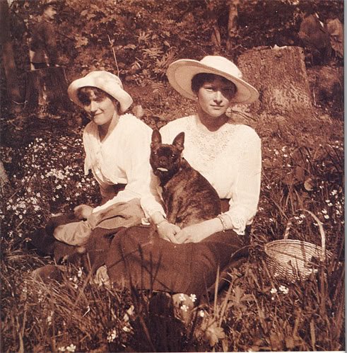 French Bulldog, dogs, Romanov,