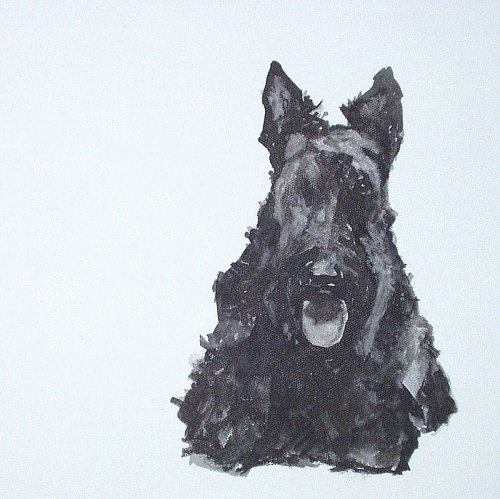 Scottish Terrier, Diehard, dog, purebred dog
