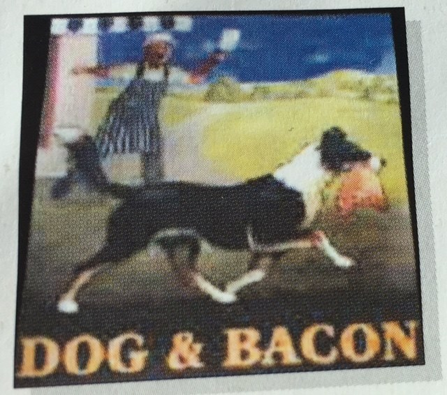 Border Collie,Dog and Bacon,Pub, dogs, purebred dog