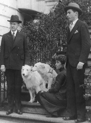 CCalvin Coolidge's Dogs, calvin Coolidge, dogs, collies, white collies