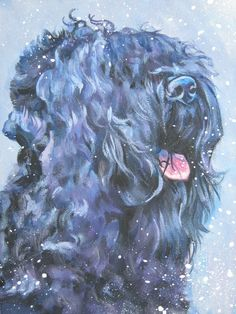 Black Russian Terrier, dogs, purebred dogs, history