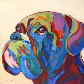 Boxer, dog, purebred dog, bullenweiser