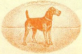 Oorang Airedales,Airedale, dogs, purebred dog, terrier, King of Terrier, Walter Lingo,Oolong Indians