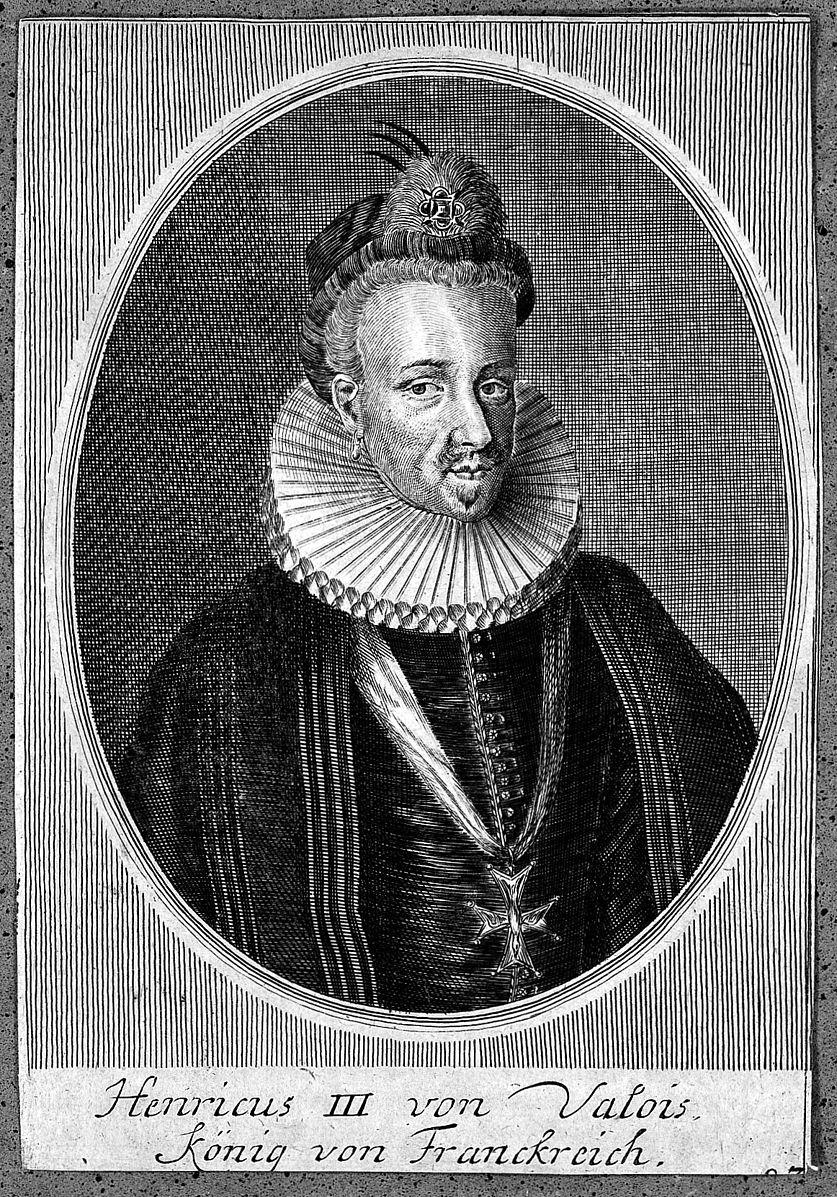 Henry III,Bichon, dogs, purebred dogs