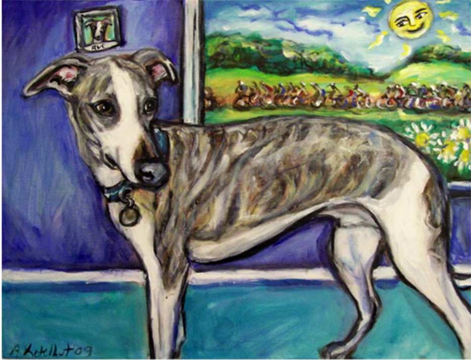 whippet, dogs, purebred dogs