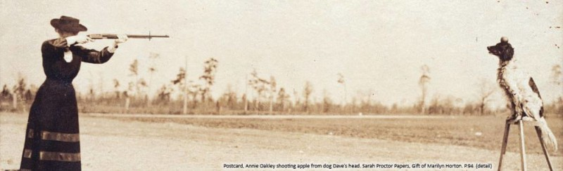 English Setter, Annie Oakley, dogs, purebred dogs, history