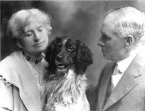 annie oakley, dogs, purebred dogs, english setter