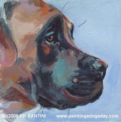 belge,Brussels Griffon,Affenpinscher, color, dogs, purebred dogs, Boerboel, South African Mastiff