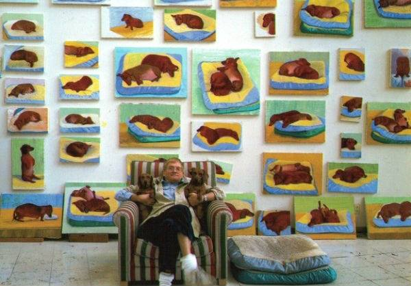 art,dachshund,David Hockney,Dogs,muses,Purebred Dog