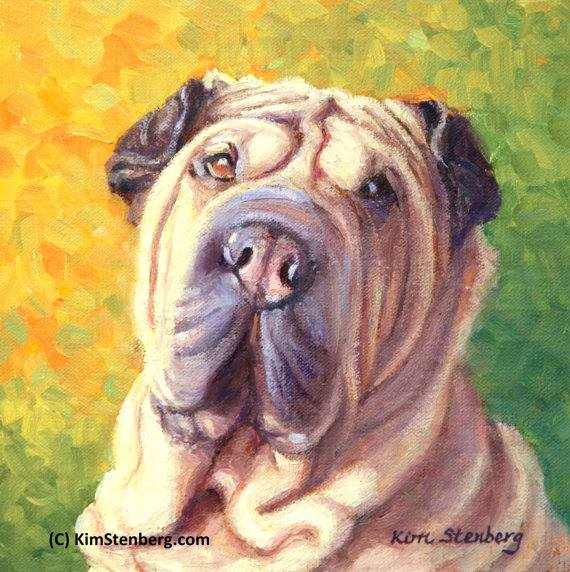 sharkskin dog,sharkskin,Shar-Pei,dogs,purebred,skin