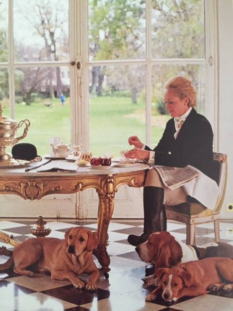 pet passport,Lady Mary Fretwell,dogs,purebred,Basset Hound
