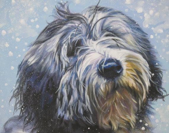 dog,purebred,Polish Lowland Sheepdog,Polish Owczarek Nizinny,pons,