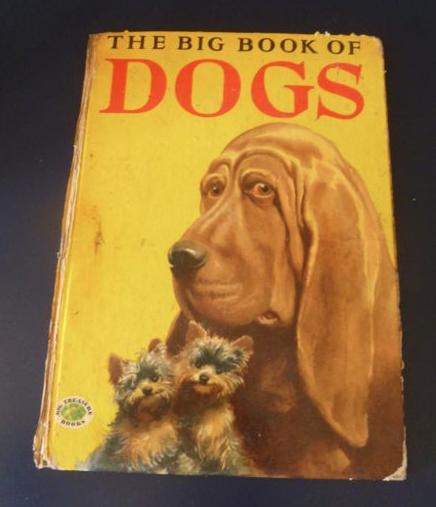 Book,dog,purebred dog