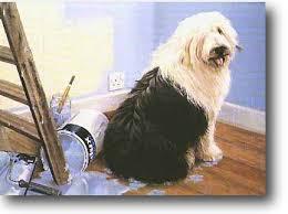 Old English Sheepdog,royal collar, coat, dogs,purebred dog