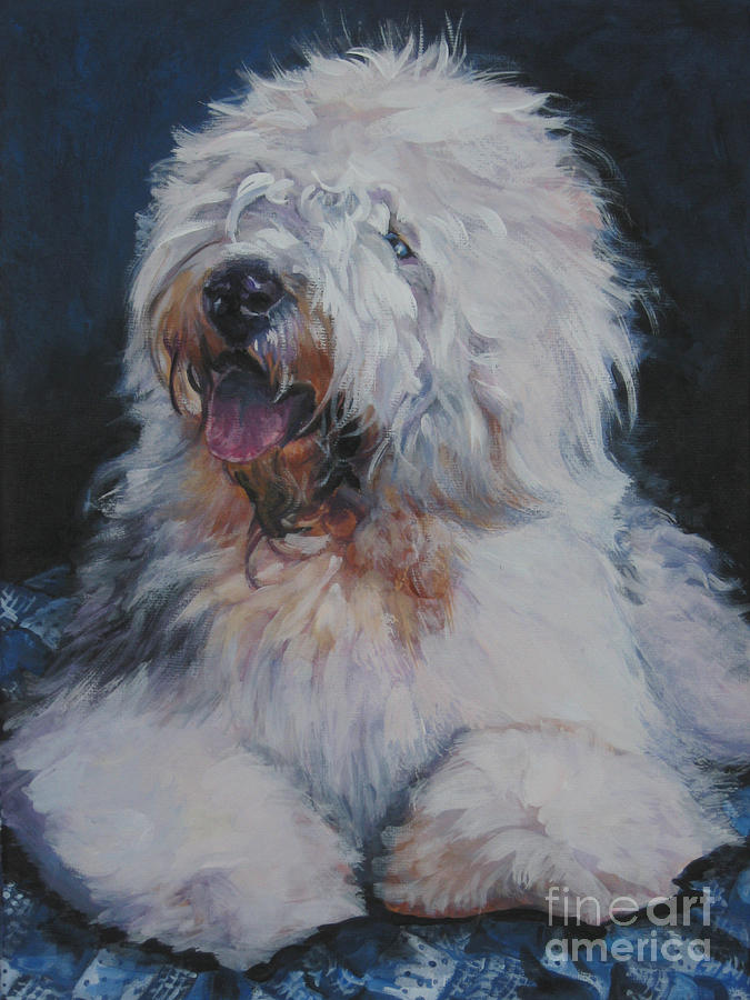 structure, old english sheepdog, roll, bobtail.