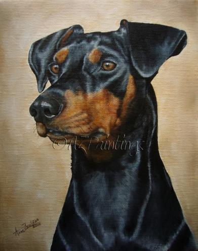 Affenpinscher,Austrian Pinscher,Doberman Pinscher,Dogs,German Pinscher,Miniature Pinscher,Pinscher,Purebred Dog