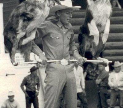 Australian Shepherd,Jay Sisler