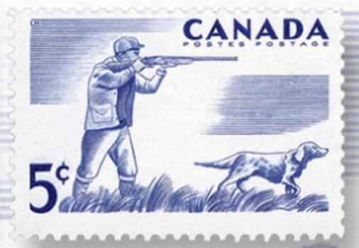 Canadian Kennel Club,stamp,Tahltan Bear Dog,Canadian Eskimo Dog,Nova Scotia Duck Tolling Retriever,Newfoundland,postage stamp