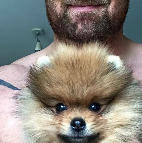 Pomeranian,Game of Thrones,The Mountain,Hafþór Júlíus Björnsson,purebred dogs