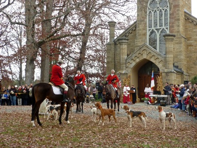 Harrier,Foxhound,hunt club,dogs,purebred dog, Blessing of hounds,