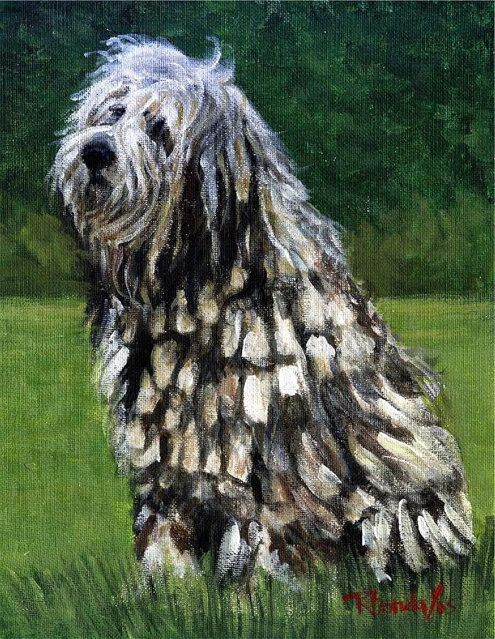 bergamasco, flocked coat, corded coat,cords,dogs,purebred dogs