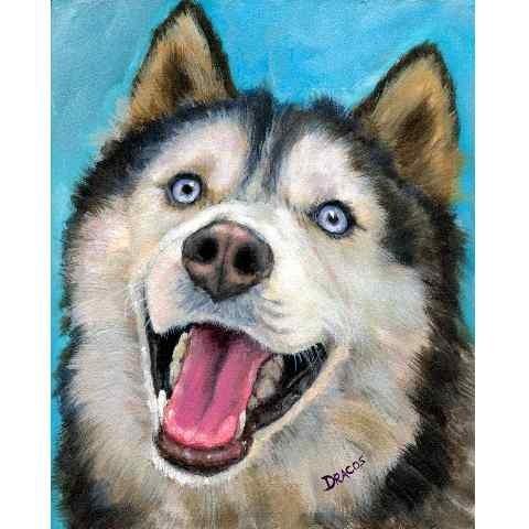 Siberian husky,dog,purebred dog,myth, legend
