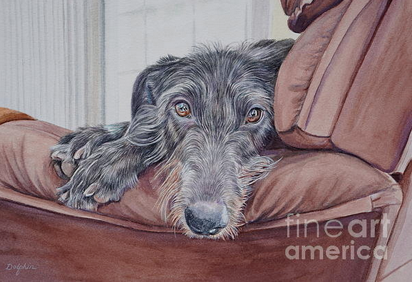 Scottish Deerhound,AKC,NAME