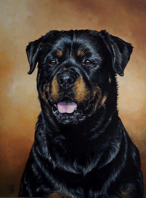 rottweiler,history,butcher's dog