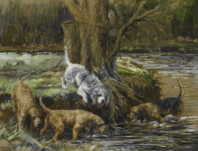 Otterhound,Old Southern Hound,Bloodhound,Griffon Nivernais,Welsh Harrier,Foxhound, Griffon de Bresse,Griffon Vendeen,Bulldog,history,breed history