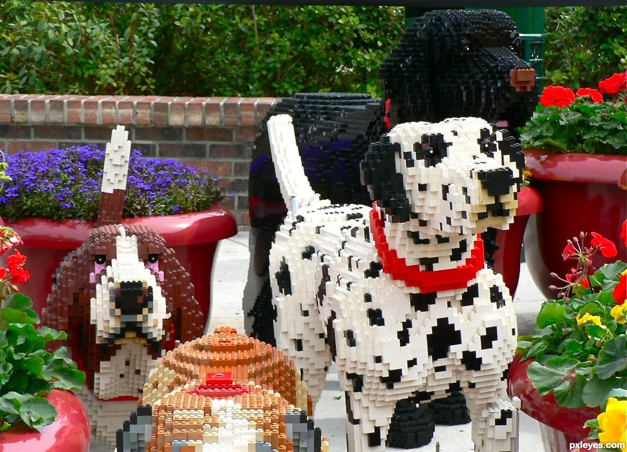 lego,dalmatian,bulldog,basset hound,newfoundland,german shepherd dog