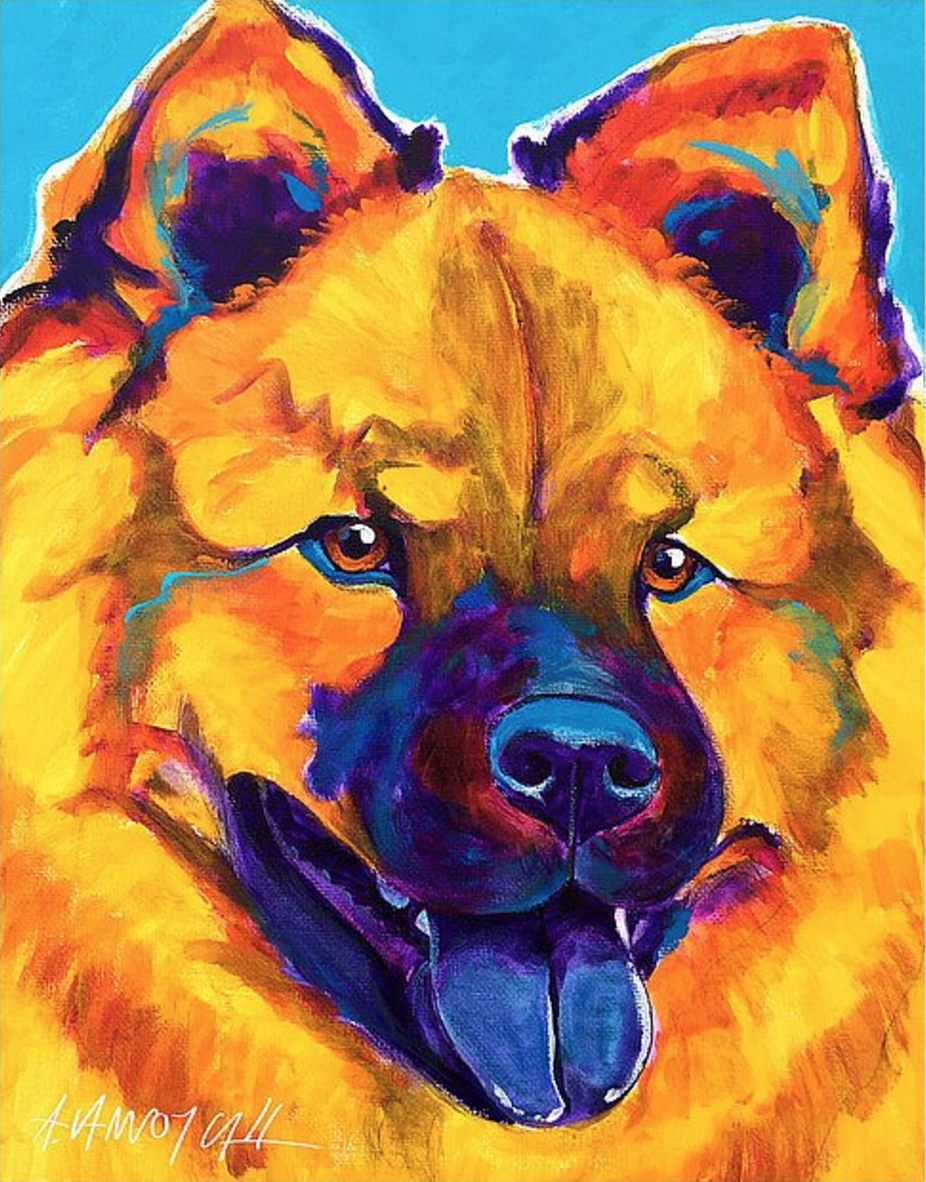 Chow Chow,Chinese Shar-Pei,Shar-Pei,tongue,structure,color