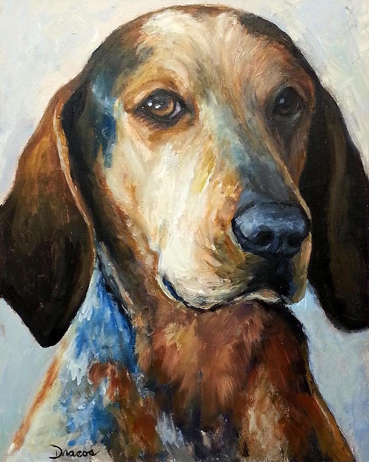 Bluetick Coonhound,Treeing Walker Coonhound,Redbone Coonhound,American English Coonhound,Plott,cold nose