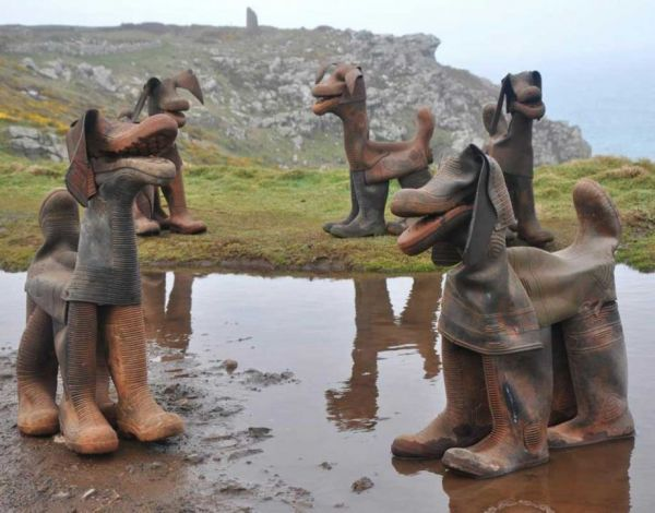 dogs,rubber boots,david kemp