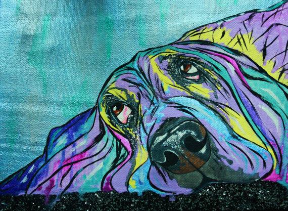 Basset Hound,hunting dog,hound,