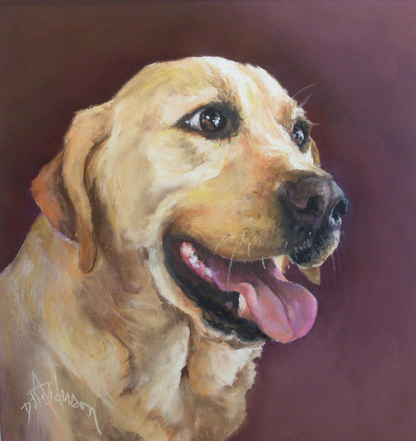 Labrador Retriever,breed standard,standard,akc,eyes,