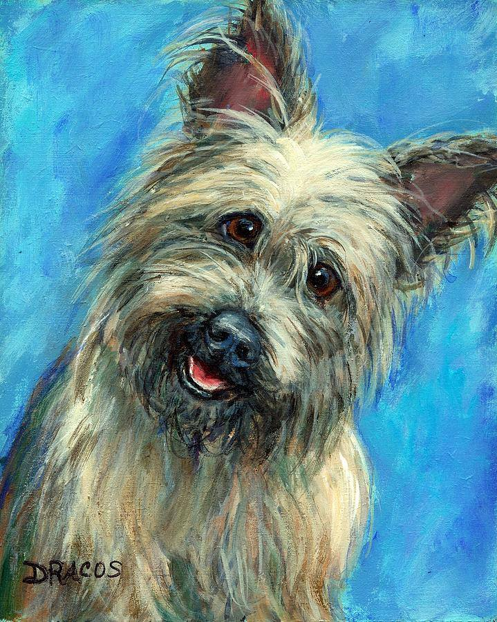 Cairn Terrier,toto,wizard of oz,twister,movies,film