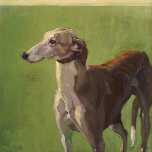 Irish Wolfhound,greyhound,sighthound,hound,