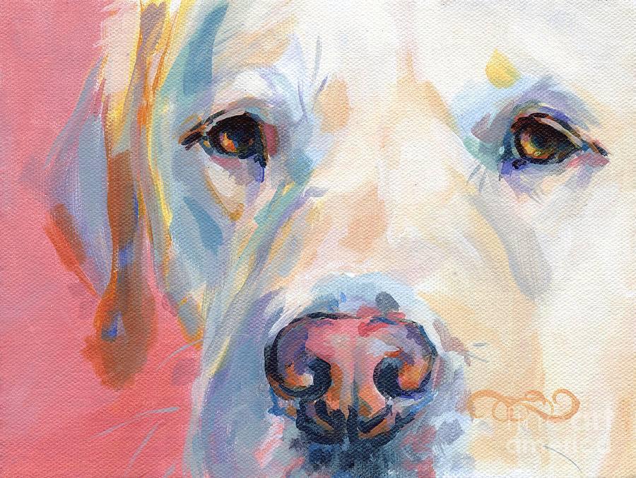 Dudley nose,nose,snow nose,pigment,nasal depigmentation,Labrador Retriever