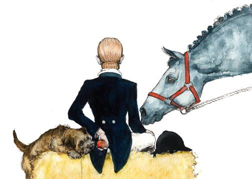 Border Terrier,Dandie Dinmont Terrier,Bedlington Terrier,