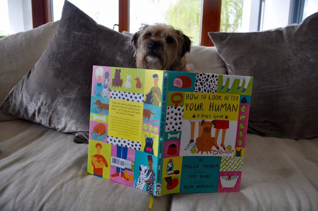 Andy Murray,Border Terrier,How to Look After Your Human: A Dog's Guide,literature,