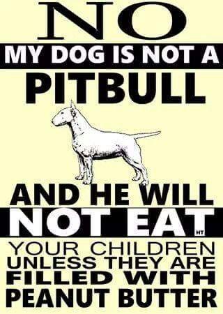 bull terrier,art,peanut butter